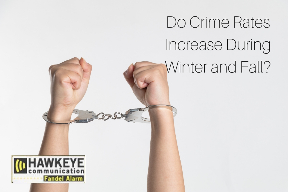 Do Crime Rates Increase During Winter and Fall_.jpg