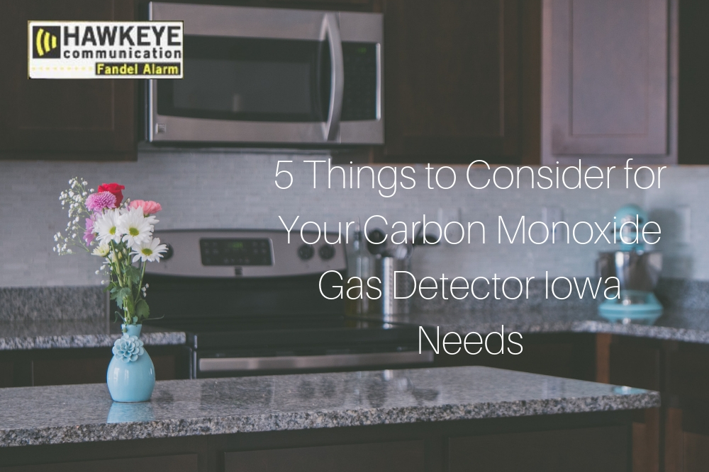 5 Things to Consider for Your Carbon Monoxide Gas Detector Iowa Needs.jpg